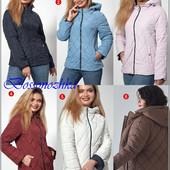 Куртки весна- осень. Достойное качество! размеры 42-56