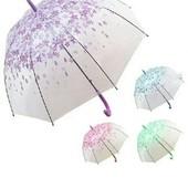Зонты без сбора